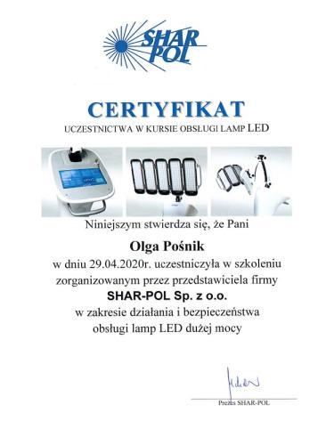 lampa LED Olga Pośnik